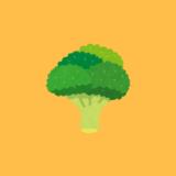 この冬もブロッコリーを育てています(2020~2021)